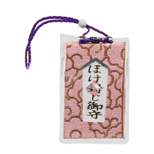 Protection (1) * Manzoku-Inari-jinja, Kyoto