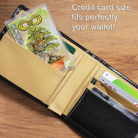 Dinero (1) * Omamori bendecido por monjes, Kyoto * Para billetera